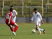 BFC Dynamo U19 - Berliner AK U19